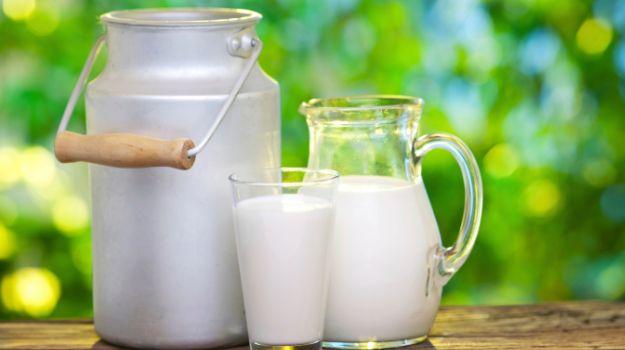 Sữa lạnh
